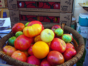 organic Heirloom tomatoes at Slow Food Nation