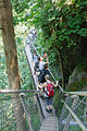 Capilano Suspension Bridge (7960608916).jpg
