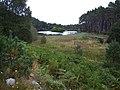 Carbisdale loch - geograph.org.uk - 57607.jpg