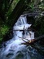 Cascada en el sendero del mirador (2731005155).jpg