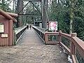 Cascade Canyon Trail.jpg