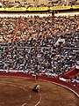 Castella bullfighting - Plaza Mexico.jpg