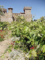 Castello di Amorosa Winery, Napa Valley, California, USA (7057109185).jpg