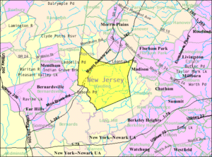 Harding Township, New Jersey - Image: Census Bureau map of Harding Township, New Jersey