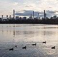 Central Park (10155).jpg