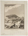 Cercolabes prehensilis - 1700-1880 - Print - Iconographia Zoologica - Special Collections University of Amsterdam - UBA01 IZ20600001.tif