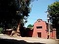 Cervera, Buin, Chile - panoramio (2).jpg
