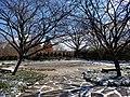 Chadwick Arboretum (32632709065).jpg