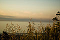 Charming sunset (5001541306).jpg