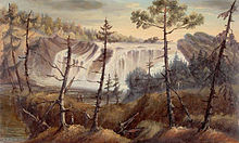 A relatively wide cascade descends perhaps 20 feet (6 meters).  Woods are visible above the falls, and the view before the falls includes scraggly coniferous trees growing out of a grassy area.