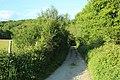 Chemin de Champfailly à Chevreuse le 21 mai 2015 - 03.jpg
