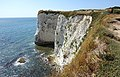 Cliff on Isle of Purbeck.jpg
