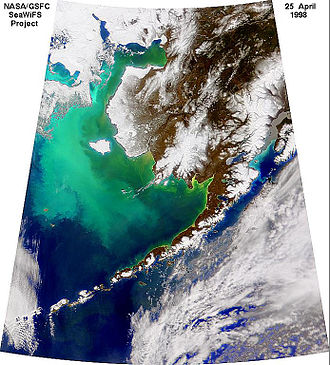 SeaWiFS - A true color SeaWiFS image of a coccolithophore phytoplankton bloom off of Alaska