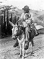 Collectie NMvWereldculturen, TM-10021528, Repronegatief 'Watervervoer per ezel, bereden door een man met kind', fotograaf niet bekend, 1947.jpg