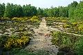 Colone panorama mai 2001.jpg