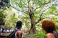 Comemorações do Dia da Consciência Negra na Serra da Barriga (23195804176).jpg