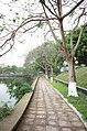 Con đường đi bộ ven hồ Thứa, thị trấn Thứa, huyện Lương Tài, tỉnh Bắc Ninh.jpg