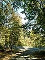 Conemaugh Gap Early Fall 2016 - panoramio - Ron Shawley (13).jpg