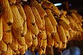 Corn hanging up in the shed above the house Nanyao Village, Naxi, Yunnan.jpg