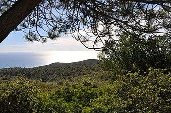Costa del Garraf.JPG