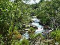 Cotobade-Rio Almofrey58 (4723637640).jpg