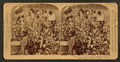 Cotton is king - A plantation scene, Georgia, by Strohmeyer & Wyman 7.png