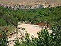Cours d'eau a Menâa 12 (Wilaya de Batna).jpg