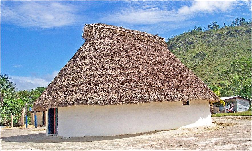 Couverture traditionnelle Vénézuélienne en chaume.jpg