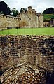 Craignethan Castle - geograph.org.uk - 1417200.jpg