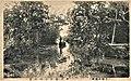 Creeks and small boats in the Jurokushima area. Circa 1930 postcard.jpg