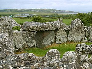Prehistoric Ireland - Image: Creevykeel 2