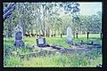 Cressbrook Cemetery (2003).jpg