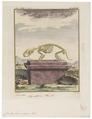 Cricetus frumentarius - skelet - 1700-1880 - Print - Iconographia Zoologica - Special Collections University of Amsterdam - UBA01 IZ20500037.tif