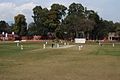 Cricket in The Doon School.jpg