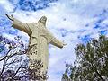 Cristo y los arboles.jpg