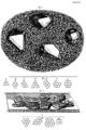Crystal Micrographia Hooke.png