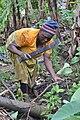 Cultivatrice camerounaise9.jpg