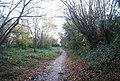 Cycleway 17 - geograph.org.uk - 1610546.jpg