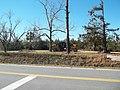 Cypress FL Norton House site04.jpg