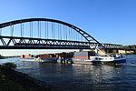 Düsseldorf - Am Sandacker - Gavialis02325059+GavialisII02333990 06 ies.jpg