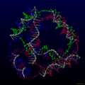 DNA tetrahedron.png