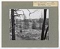 Damaged Properties - Maine - DPLA - 5960f3c80f371ce996ab7a1e5e13f3db.jpg