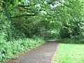 Daneshill Parks Woods - geograph.org.uk - 843745.jpg
