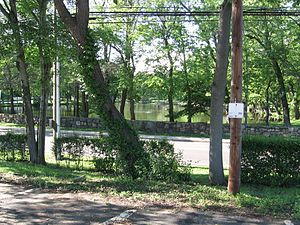 Darien (Metro-North station) - View of Tilly Pond Park, across West Avenue.