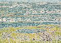 David Milne - Near View of Vimy Ridge.jpg