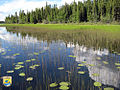Deadman Lake - Region 7 (8813424772).jpg