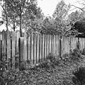 Deel van tuinhek om moestuin, rechts van de oprijlaan - Voorschoten - 20407685 - RCE.jpg