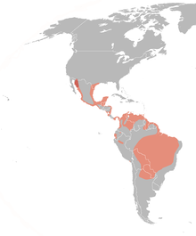 Dendrocygna autumnalis distribution map.png