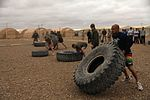 Deployed personnel 'throwdown' for fitness supremacy DVIDS364387.jpg