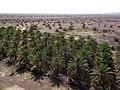 Desert Outside Jabrin (225446777).jpeg